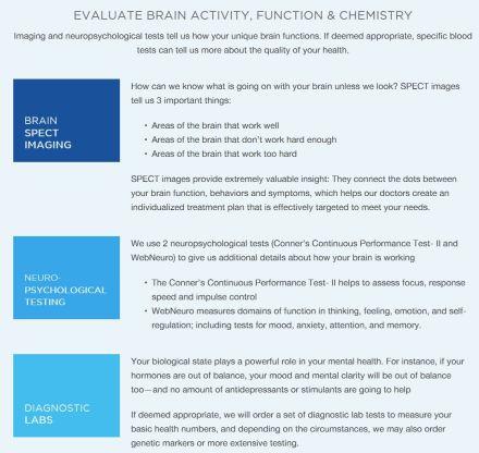 brain  101