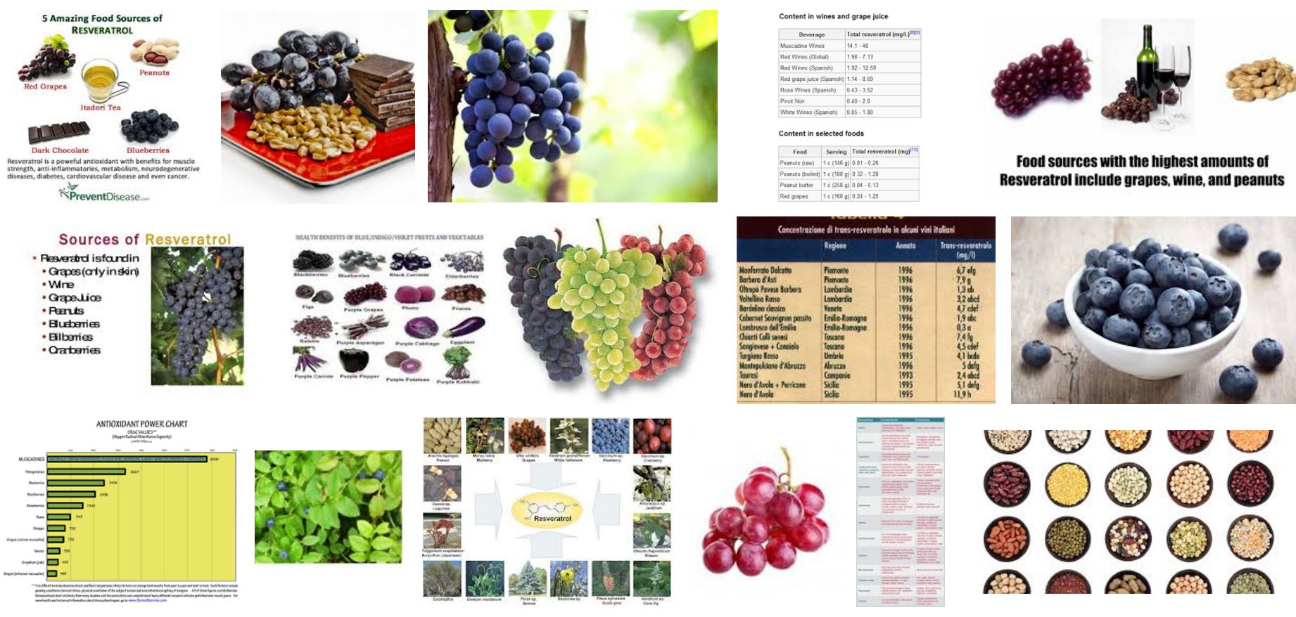 Resveratrol and calorie restriction activates SIRT1 , anti