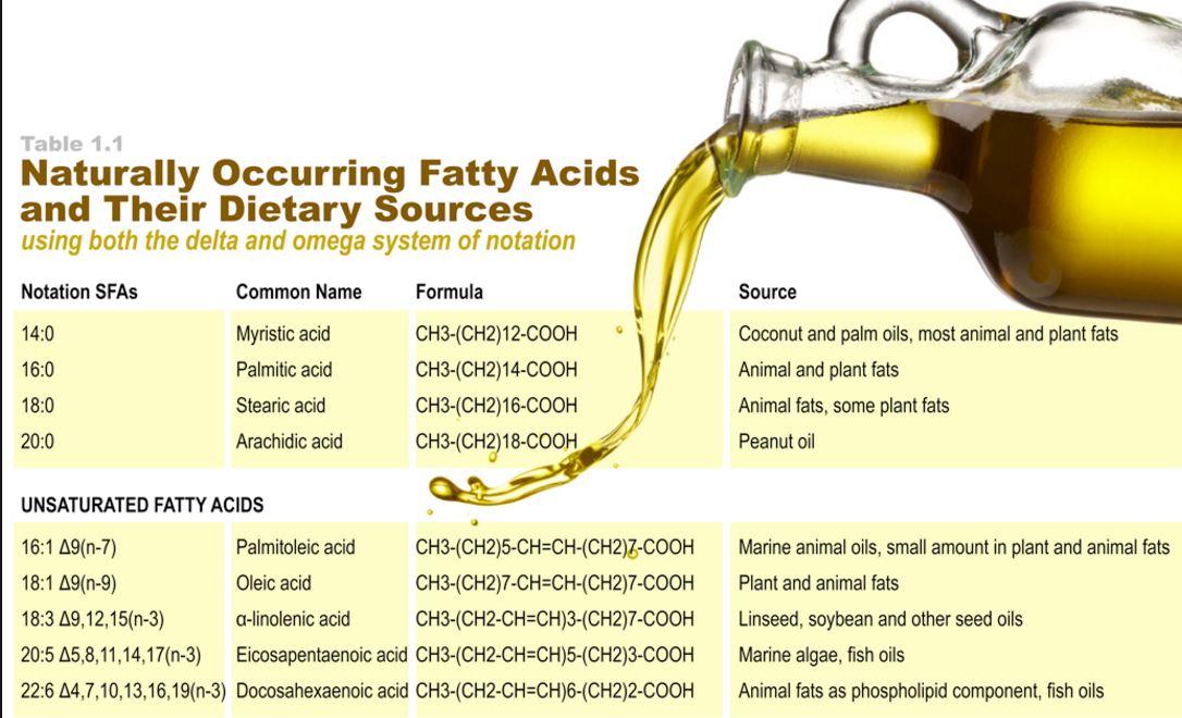 Long Chain Fatty Acids Foods