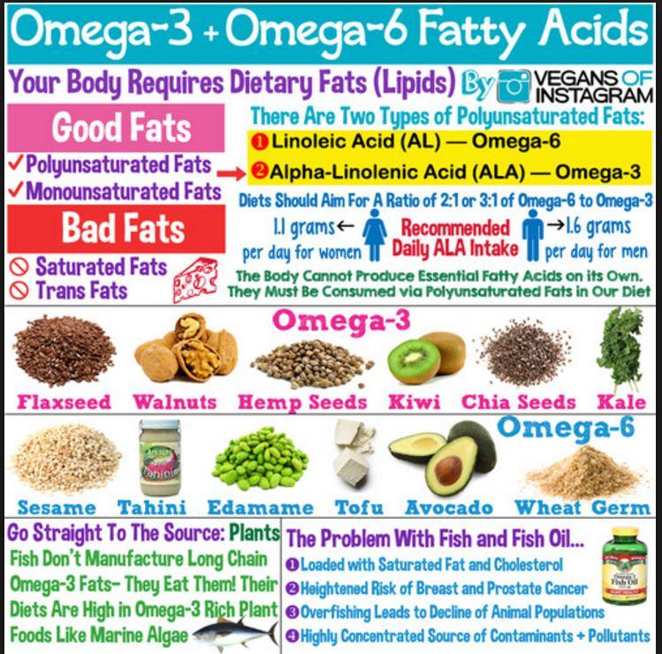 Medium Chain Fatty Acids Foods